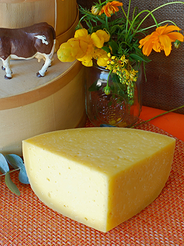 Sand Creek Brick Cheese
